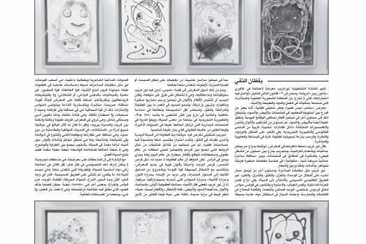 معرض لور غريب في غاليري جانين ربيز - طفولة لا نهائية تتفاعل معها الاختبارات الفنية